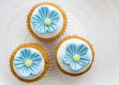 Flower cupcakes — Stock Photo