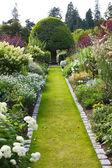 庭のパス — ストック写真