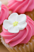 Cupcake closeup — Stock Photo