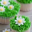 Stock Photo: Daisy cupcakes