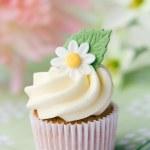 Daisy cupcake — Stock Photo