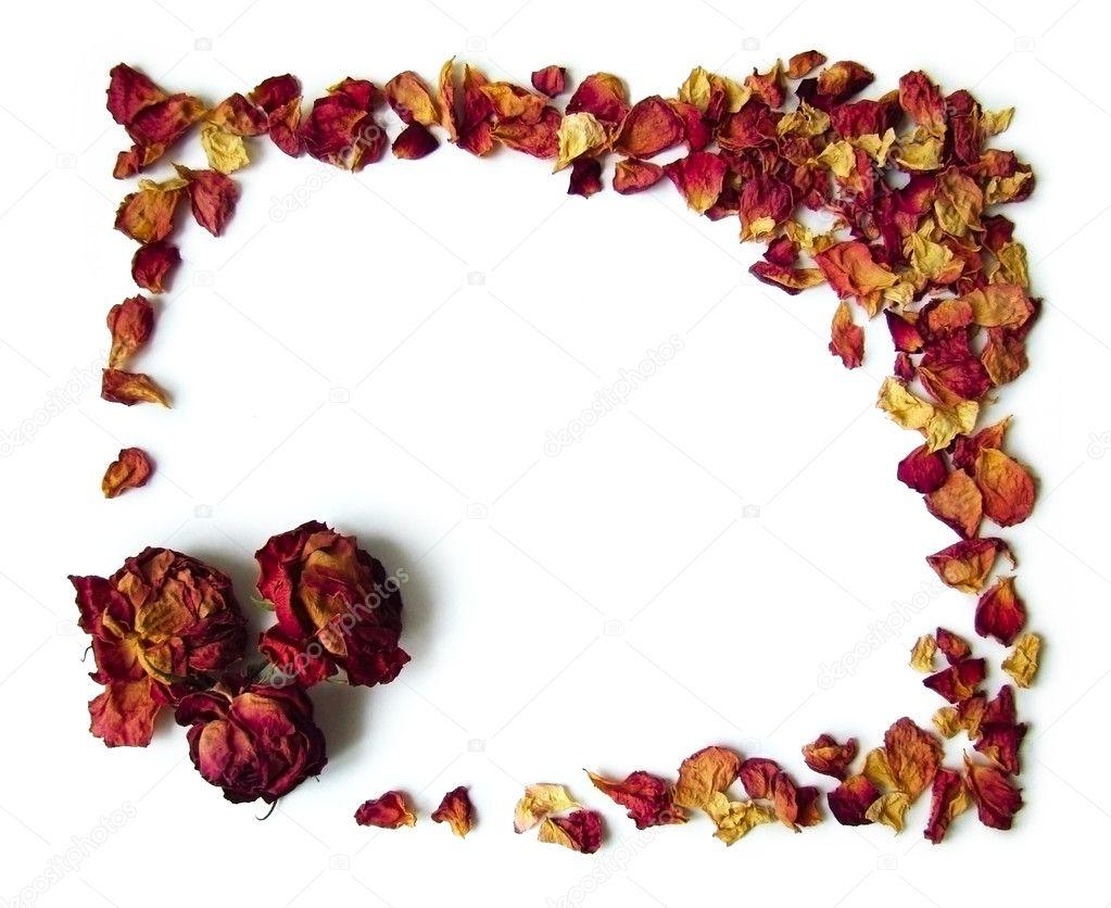 从干燥花瓣和玫瑰花蕾的背景