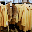Stock Photo: Fur store