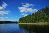 Finnish lake — Stock Photo