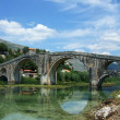Stock Photo: Arched bridge
