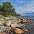 Stock Photo: Solovki seacoast