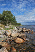Solovki seacoast — Stock Photo