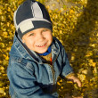 Boy among autumn leaves - Stock Photo