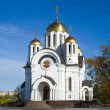 Stock Photo: Fine orthodox church.