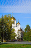 Orthodox church among turning trees — Stock Photo