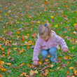 Stock Photo: Young girl during autumn