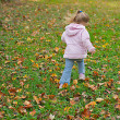 Young girl skipping the the leaves. - Stock Photo