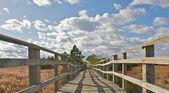 Wooden bridge leading to the beach. — Stock Photo