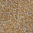 Stock Photo: Textured abstract background of pebbles.