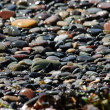 Sparkling beach pebbles — Stock Photo