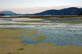 Saltchuck lagoon at Spencer Spit — Stock Photo