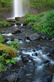 Downstream of Latourell falls — Stock Photo