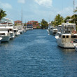 Key Largo Canals — Stock Photo
