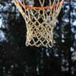 Royalty-Free Stock Photo: Basketball Hoop