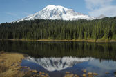 Majestic Mt, Rainier — Stock Photo