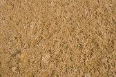Alkali soil — Stock Photo