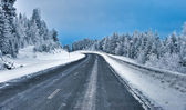 Vinterväg冬天路 — 图库照片