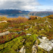 Norwegian landscape - Stock Photo