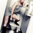 Royalty-Free Stock Photo: Toilet fashion