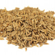 Royalty-Free Stock Photo: Cumin