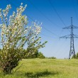 Stock Photo: Energy of spring