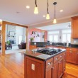 Upscale Kitchen Interior — Stock Photo #2628134