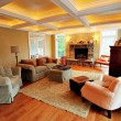 Upscale Living Room Interior — Stock Photo