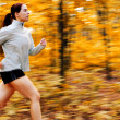 Stock Photo: Fall Forest Runner