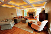 Upscale Living Room Interior — ストック写真