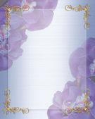Wedding Invitation border Orchids — Stock Photo