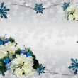 Christmas border white poinsettias — Stock Photo