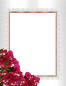 Bougainvillea and lace border — Stock Photo