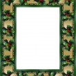 Christmas Border Holly frame — Foto de Stock
