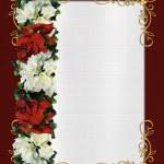 Christmas Border poinsettias — Stock Photo