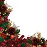 Christmas Holly Berries Garland Border — Stock Photo