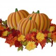 Halloween Pumpkins and Fall Leaves — Stock Photo