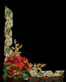 Noel sınır holly çiçekler şerit — Stok fotoğraf