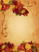 Thanksgiving Autumn Fall Border — Stock Photo