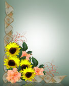 Sunflowers and Hisicus border — Stock Photo