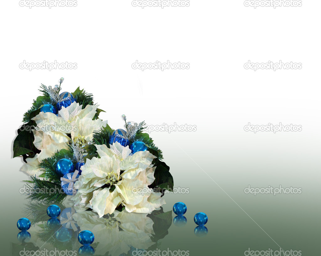 Christmas greeting card, background, border or template with white poinsettias, blue ornaments on soft green reflective surface, copy space — Stock Photo #2143898