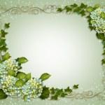 Ivy and Hydrangea Floral Border invitati — Stock Photo