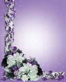 Noel çiçek sınır mor — Stok fotoğraf