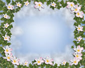 Ivy and Plumeria floral Border — Stock Photo