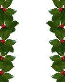 Christmas Holly borders — Stock Photo