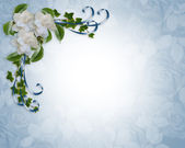 Wedding Invitation border Gardenias — Stock Photo